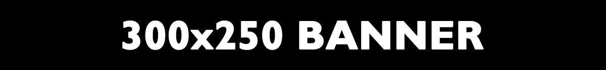 300x250 banner