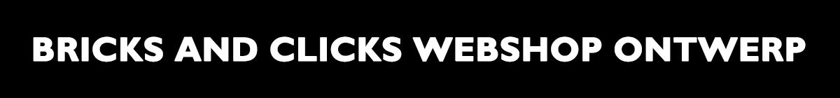 Bricks and Clicks webshop ontwerp